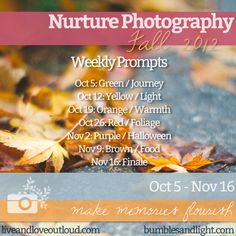 Nurture Photography Challenge: Autumn 2012 - Inspiring prompts, tips and tutorials, freebies. Nurture your creativity and let your photography flourish.