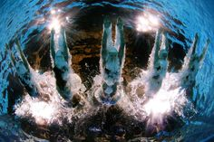 12 inspiring shots of aquatic athletes: Plunging in Olympic Swimming, Synchronized Swimming, Open Water Swimming, Picture Editor, Sports Art, Big Picture, Amazing, Cool Pictures, Surfing