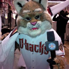 """Diamondbacks D. Baxter The Bobcat was on Hockey Night in Canada tonight at the Arizona Coyotes game.  He tweeted; """"eat your heart out"""" to Ace, the Blue Jays mascot."""