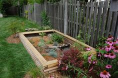 A Nice Enclosure Should Look Like A Piece Of The Garden (Link: Turtletopia - Constructing an Outdoor Turtle Pen)