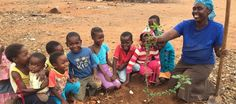 How a UK wholefoods company is sponsoring 10 baobab guardians to help grow tiny baobab seedlings into mighty baobab giants!