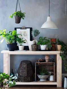 REKARNE avlastningsbord blir ett riktigt blomsterbord. FOTO taklampa, krukorna heter DRUVFLÄDER, BIGARRÅ, ORÄDD, PEKANÖT och FRIDFULL.
