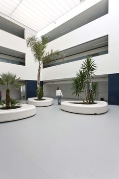 Image 1 of 25 from gallery of José Macedo Fragateiro Secondary School / Atelier d'Arquitectura J. A. Lopes da Costa. Photograph by Manuel Aguiar