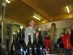 Journée Vinification au Domaine Chapelle - Dégustation des vins du Clos des Cornières #GourmetOdyssey