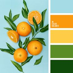 new Ideas bath room colors palette orange Shades Of Yellow Color, Orange Color Palettes, Green Colour Palette, Green Colors, Bright Colors, Orange Shades, Spring Color Palette, Summer Color Palettes, Warm Colors