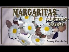 MARGARITAS CON BOTELLAS PLÁSTICAS - YouTube