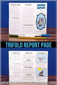 Animal Report for Any Animal Third Grade Writing, Teaching Second Grade, Third Grade Science, Elementary Science, Teaching Writing, Teaching Resources, Teaching Ideas, Writing Lab, Writing Lessons