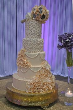 The Cake Zone - Rated top 3 Florida Best Bakeries | Tampa Cakes | Best Tampa Weddings