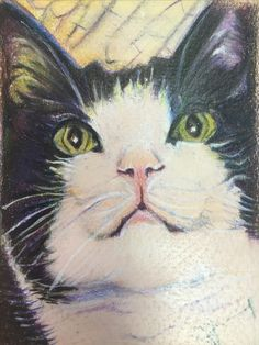 Artworks, Cats, Animals, Gatos, Animales, Animaux, Animal, Cat, Animais
