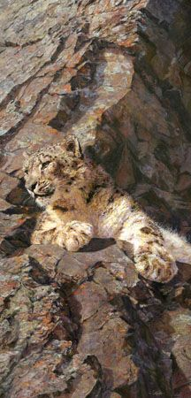 David Shepherd Wildlife Foundation : Wildlife Artist of the Year Competition