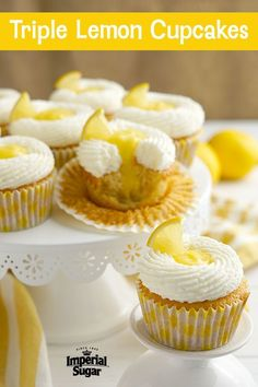 Triple Lemon Cupcakes Cheesecake Recipes, Cupcake Recipes, Dessert Recipes, Lemon Cupcakes, Fun Cupcakes, Decadent Chocolate, Chocolate Desserts, Quick Easy Meals, Easy Dinner Recipes