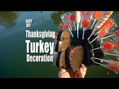 DIY Wood Turkey Thanksgiving Lollipop decoration