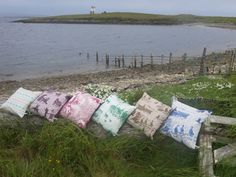 Cushion collection on a log down at the beach
