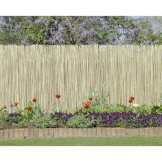 Might use bamboo fence on one side of the yard for our backyard wedding since our landlord hasn't finished our wood fence.
