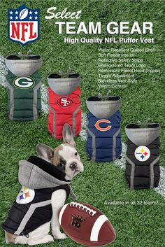 What team does your fur baby root for? We have the LARGEST selection around! new items arriving! #DogNFL Dog NFL #PoshPuppy