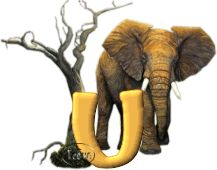 Tami-s-Elephant-Safari-U.gif
