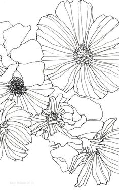 Flower Drawing Part of a pen drawing of Cosmos and Sweet Peas drawn with a Rotring pen on smooth cartridge paper. - Part of a pen drawing of Cosmos and Sweet Peas drawn with a Rotring pen on smooth cartridge paper. Floral Drawing, Art Floral, Flower Design Drawing, Flower Graphic, Flower Sketches, Drawings Of Flowers, Inspiration Art, Doodle Art, Zen Doodle