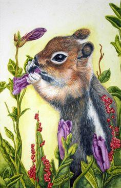 Squirrel eating flower. Watercolour by Charmaine Diedericks, littlesongstudio.com