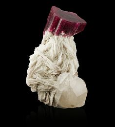 A single large intensely coloured tourmaline crystal (variety rubellite, species elbaite) is dramatically perched upon a base of stunningly white bladed albite (a feldspar) crystals
