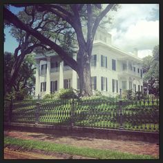 Stanton Hall. My favorite #Natchez home