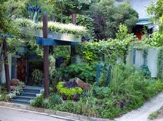 Green Roof Arbor