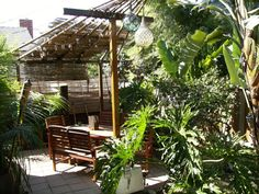 Modern Tiki Patio/ Garden