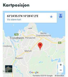 Sort og hvit hund funnet i Jonsvannsveien ved avkjøring til stokkanhaugwn Sør-Trøndelag. (link: http://dyrebar.no/72585/) dyrebar.no/72585/ #hund #funnet  Sort og hvit hund funnet i Trondheim  28.02.2018 11:58