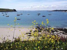 Summer's Beach, St Mawes