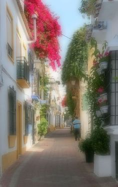 'Marbella' von hako bei artflakes.com als Poster oder Kunstdruck $16.63 Illustration, Sidewalk, Street View, Plants, Pictures, Andalusia, Teneriffe, Sevilla Spain, Wall Canvas