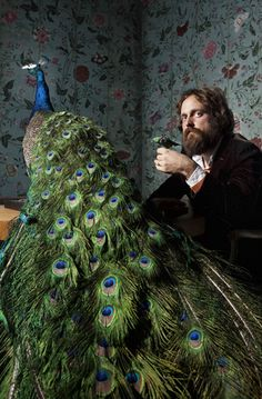 #sambeam #ironandwine #peacock #music
