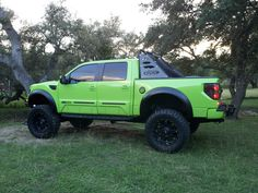Custom Ford Raptor with Front and Rear Bumpers, ADD Chase Rack other Ford Raptor Accessories!