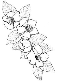 serie de flores dibujos - Buscar con Google