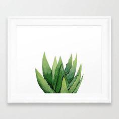 Set acuarela. Serie botánica. Aloe Vera Print. Impresión de