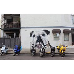 (Loc) Posted on May 26 2016 at 05:12PM: made me sad when I saw this. Missing my baby Basha. Its been almost 2 years! #graffiti #wallart #art #artwork #pug #pugsofinstagram #dog #doglover #bondi #bondibeach #beach #seaside #scenery #view #sydney #australia #aussie #wanderlust #outandabout #wanderaustralia #travel #wheninsydney #pet #love #memories by allanroy_rn.au