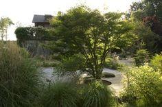 avant-après jardin – Horticulture et Jardins