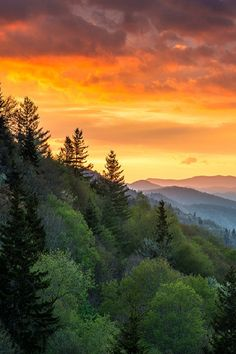 Sunrise over the Great Smoky Mountains National Park, North Carolina, USA