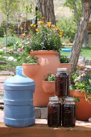 Camp Wander: Please Don't Drink the Sweet Manure Tea!  Excellent info for gardening.