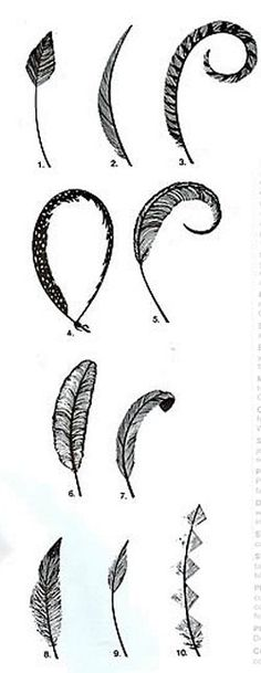 How-to for shaping various feathers and a good summary on feather types and uses