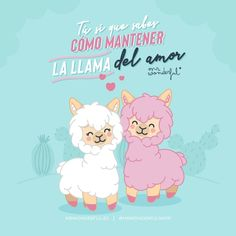 L'ama o non l'ama? Cute Love Images, Funny Images, Cute Pictures, Llama Pictures, Romantic Humor, Phrase Of The Day, Spanish Lesson Plans, Cute Puns, Love Phrases