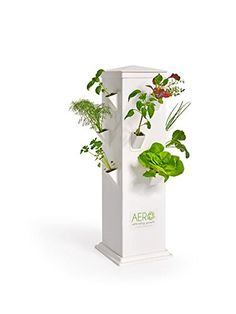 MiniGarden Basic S Uno Tabletops; Wall Mounting option an Easy Gardening Innovative Startup Kit equipped with a Self-Watering and Nutrition System Ideal for Window Sills White Kitchen Counters
