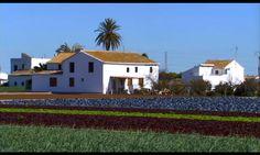 huerta valenciana - Buscar con Google