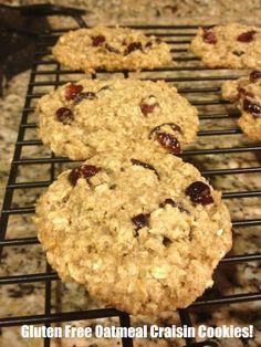 Flourless Oatmeal Craisin Cookies!