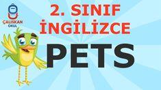 2. Sınıf İngilizce Pets Calm, Youtube, Musica, Youtubers, Youtube Movies
