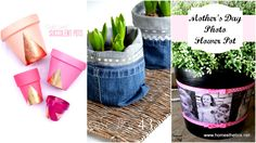 DIY Flower Pot Projects