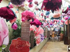 Blooms and Birdies at PUBLIC 2016 - Katie Rebekah #Claremont underwent a 48hr creative overhaul this weekend as the #PUBLIC2016Platform Festival took over the town centre!#katierebekah #katie #rebekah #perth #australia #perthblogger #australianblogger #aublogger #perthblog #aussieblog #australianblog #art #creativity #thelanguageofflowers #paperflowers #pretty #floral #sayitwithflowers