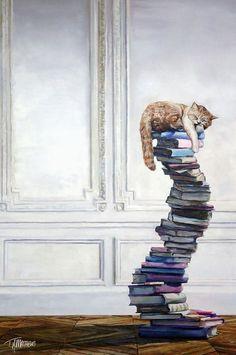 Chat - Dormir - Livre / Cat - Sleeping - Book
