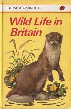 Conservation  Wild Life in Britain Ladybird Books by RetroBooksUK, £2.00