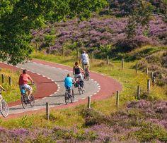 EuroVelo 3 : le nouvel itinéraire vélo qui reliera l'Espagne à la Norvège