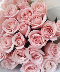 Roses #brevani #jewelry #diamonds