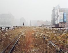 Close to where I used to live...   Joel Sternfeld. The High Line.